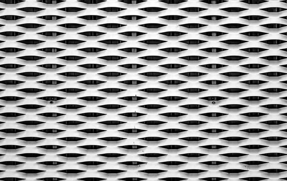 Expanded-Mesh01